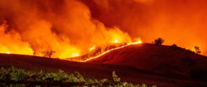 CA Wildfires Spark Widespread Evacuations